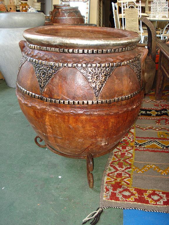 ORCIO Berbero  medio